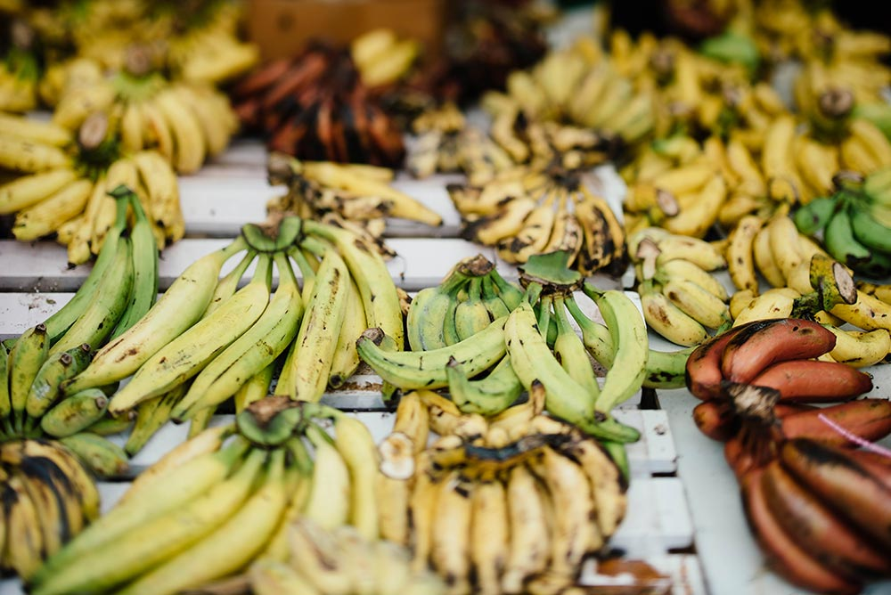 Can a banana help a hangover? Lots of banana bunches sit on a table top
