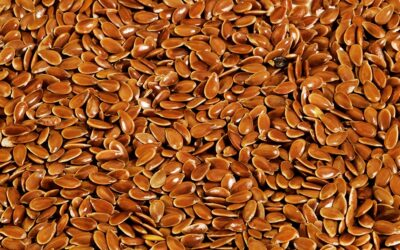 The three real and key benefits of eating Flaxseed
