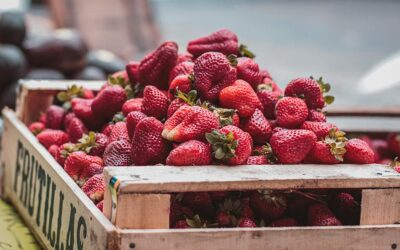 Benefits of eating heart attack preventing strawberries