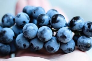 Eat grapes for an endurance boost. A bunch of grapes