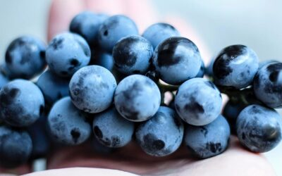 Eat grapes for an endurance boost
