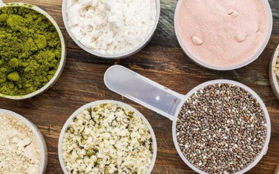 Which type of protein powder is right for you?