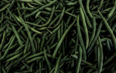 The benefits of eating Green beans and Fava beans