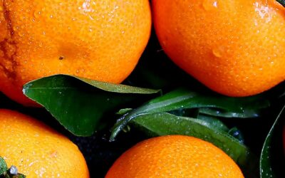 How an orange can reduce fat storage