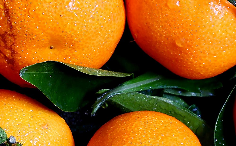 How an orange can reduce fat storage. Oranges sit piled up