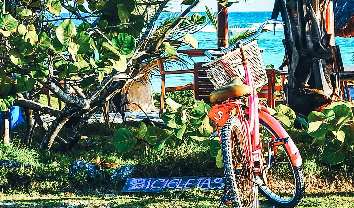 Pro's and cons of travelling the Mahahual Coast. A pink rental bike parked up on the lush green coastline of Mahahual