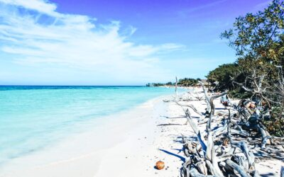 Playa Punta Larva visit one of the best beaches in the world