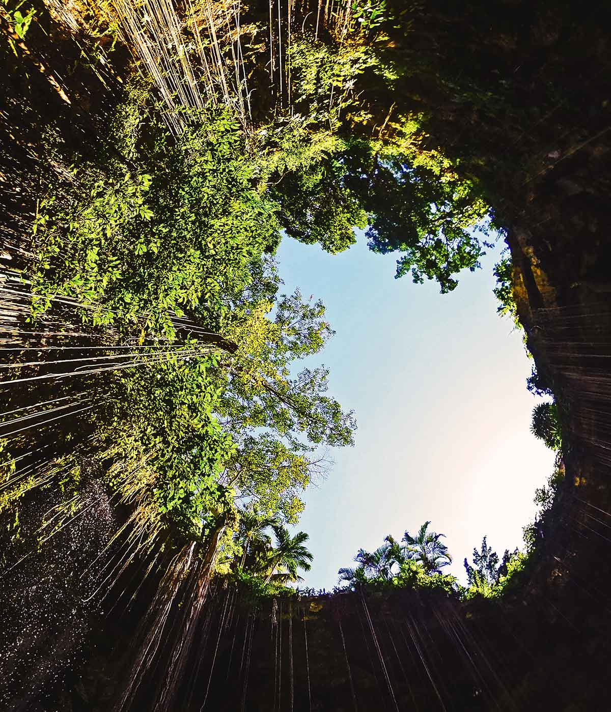 20 EPIC Valladolid Instagram spots for travelling Mexico. Looking up from the water in Cenote Ik Kil