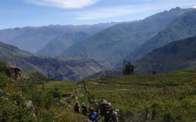 Here's why trekking Colca Canyon took my breath away
